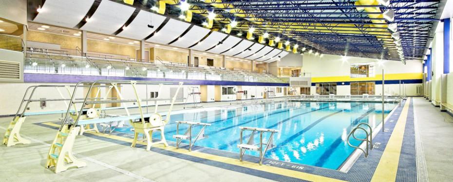 lyons township swim meet app
